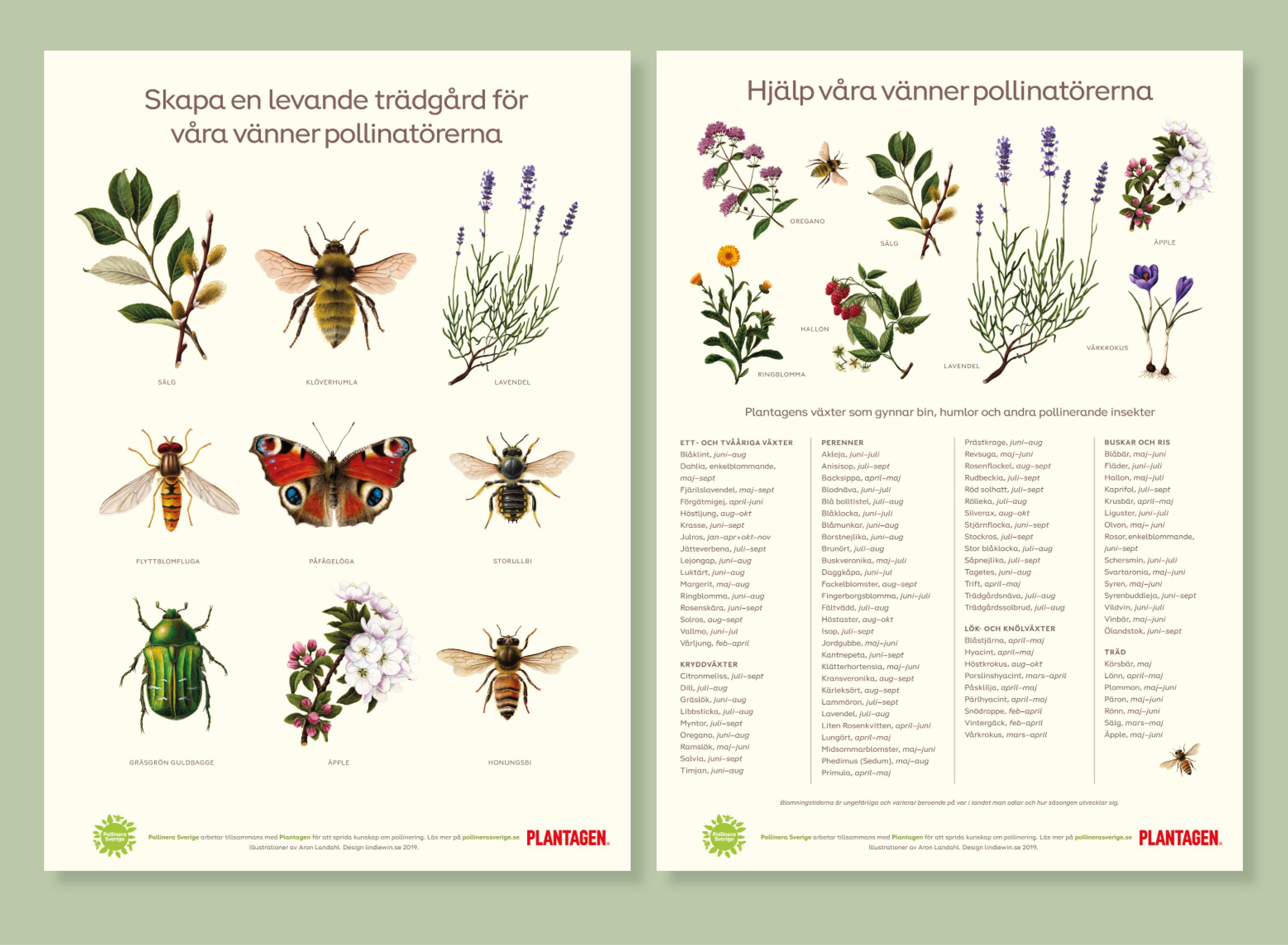 Pressbild Plantagen Pollinate Europe