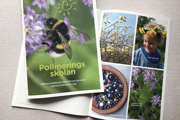 pollineringskola-webb